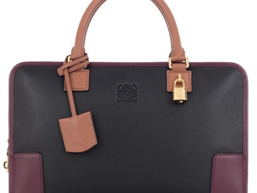 I'd love to add a Loewe Amazona Bag to my collection