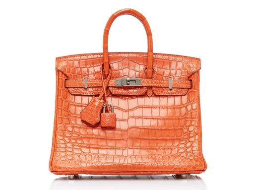 Shop a Big Selection of Rare Hermès Bags at Heritage Auctions' Latest Moda Operandi Trunk Show