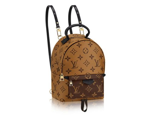 The Louis Vuitton Palm Springs Mini Backpack is the Bag of the Moment