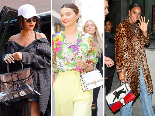 The Best Celebrity Bag Looks of 2017