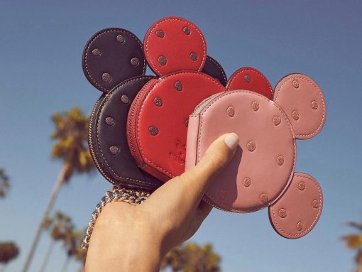 Coach Just Released Another Collaboration With Disney