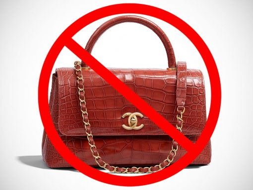 Chanel to Ban Use of Exotic Skins Moving Forward