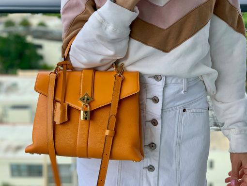 Purseonals: Louis Vuitton Rose Des Vents
