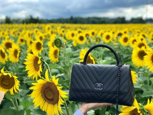 The Best National Handbag Day 2019 Snaps and Shares