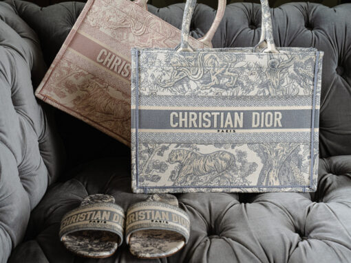 Unveiling the Stunning Small Dior Toile de Jouy Embroidery Book Tote
