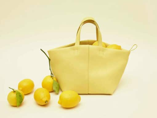 Introducing the Mansur Gavriel Tulipano Bag