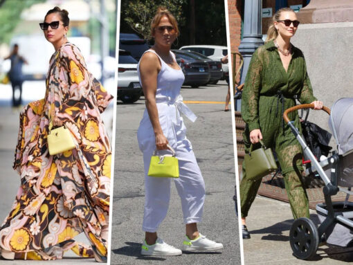 Celebs and Their Louis Vuitton Capucines Bag